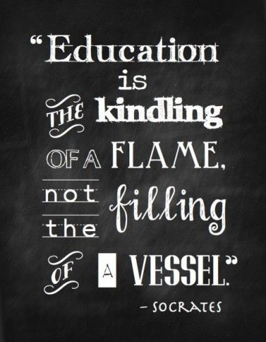 I couldn't have said it better myself. Education is about so much more than just memorizing facts and data and taking a test.  #true #life #quote