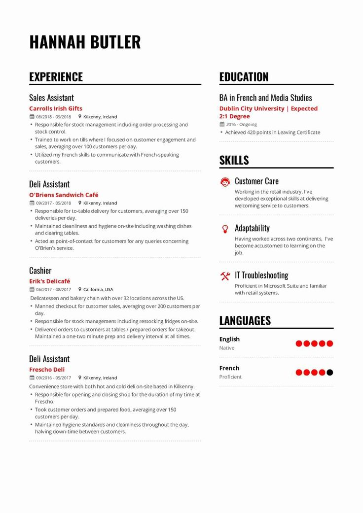 23 Resume Projects Section Example in 2020 Resume