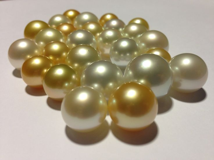 South Sea pearls lot number 788. Weight : 129,19grams/26pieces. Size: 14mm - 17,7mm. Round shape high lustre . AVAILABLE now! contact us for inquiry : info@lombokpearlfarm.com