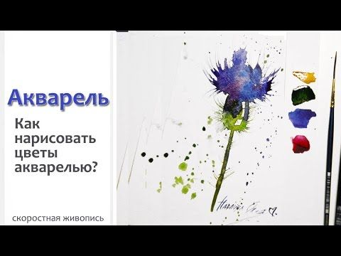 Watercolor flower.
