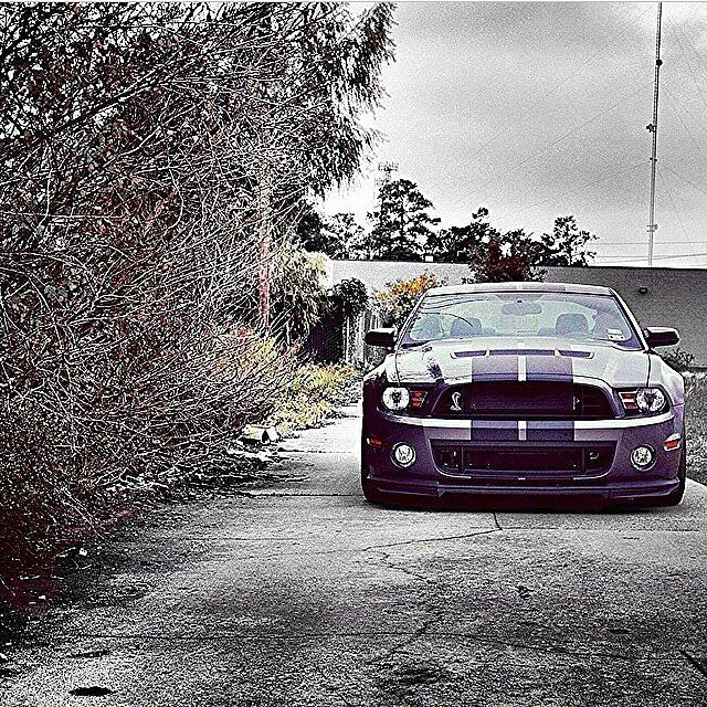 Follow us if you love Muscle Cars! @drive.muscle // driveslate.com --------------------------------------------------- Looking to do some spirited driving? Visit driveslate.com to find the best winding routes near you! --------------------------------------------------- #ford #dodge #chevrolet #chrysler #chevy #car #cars #musclecar #srt #hellcat #challenger #cargram #mustang #hemi #cadillac #corvette #musclecars #horsepower #v8 #ride #americanmuscle #amazingcars247 #carswithoutlimits…
