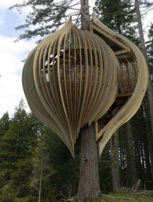 Treetop Restaurants - The Yellow Treehouse (VIDEO)