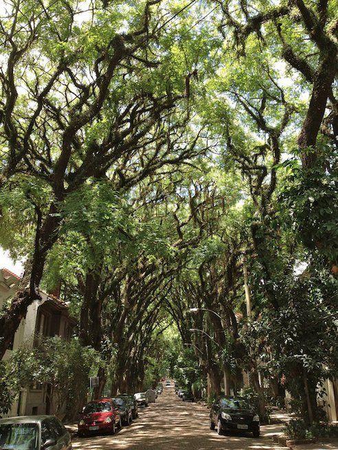 Rua Gonçalo de Carvalho, in the Brazilian city of Porto Alegre