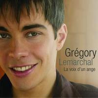 Grégory Lemarchal - SOS d'un terrien en détresse