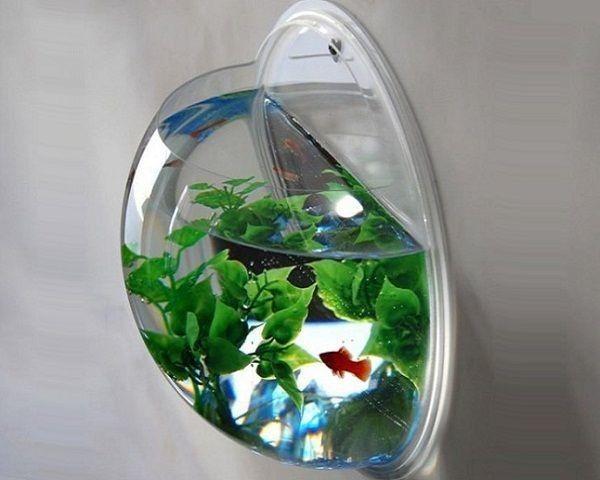 Aquarium Diy Ideas | Diydry.co