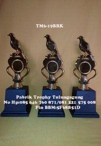 TM6-19BRK