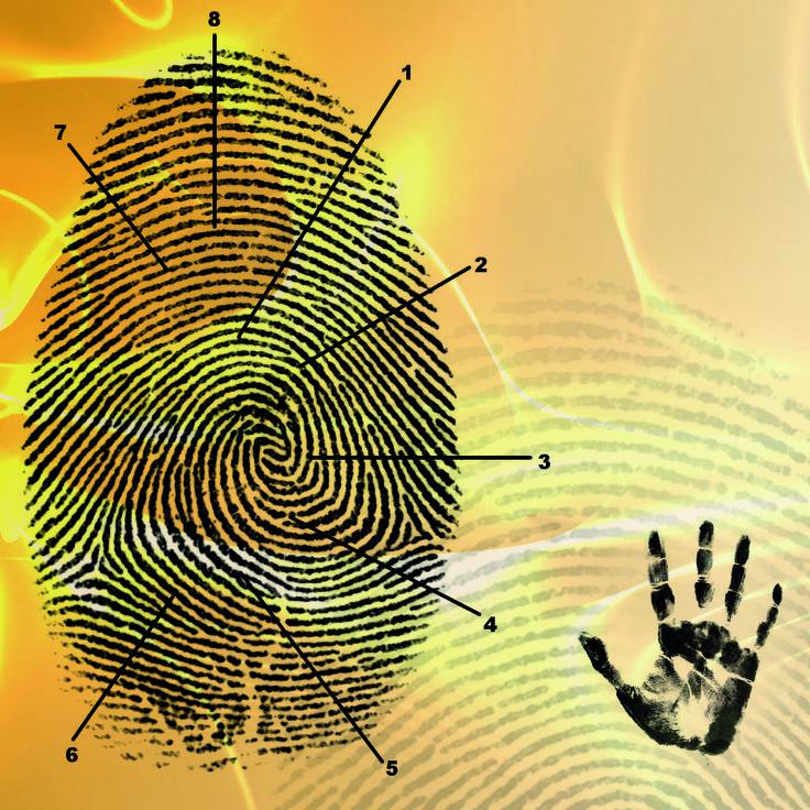 Biometric handwriting analysis