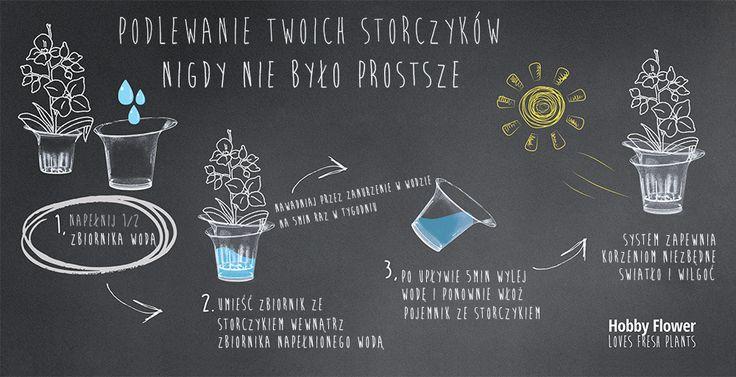 Doniczka Lina Fioletowy Bez - Evolution Home
