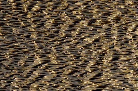 vaguelettes sur l'étang - gold plates - Ahae - Ahae: Fenêtre sur l'extraordinaire - Meinu