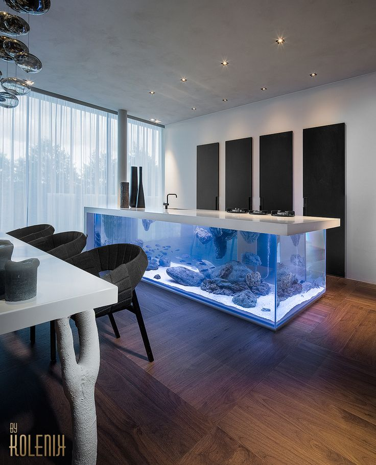 The Ocean Kitchen combines a sizable aquarium with a minimalist kitchen countertop. The L-shaped aquarium wraps around a rectangular unit that houses the sink, stove hookup, and storage space. The ...