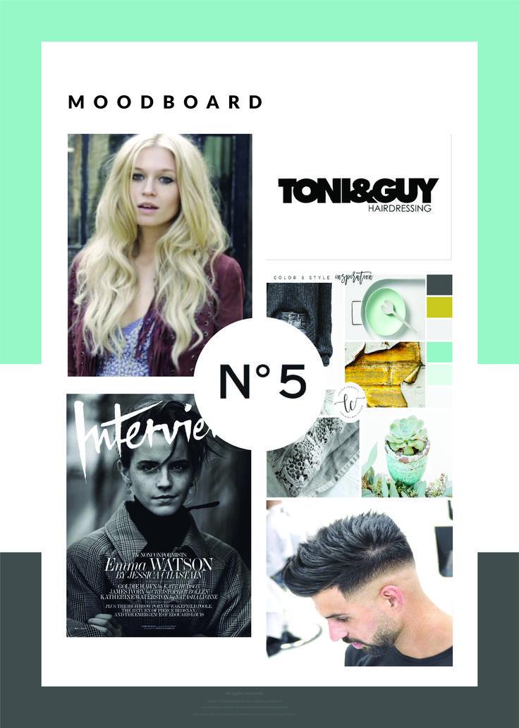 Mood Board - Branding Inspiration for Tease Me Hair Creations Custom Branding and Identity.