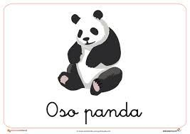 Best 25 Dibujos de osos panda ideas on Pinterest  Ilustracin de