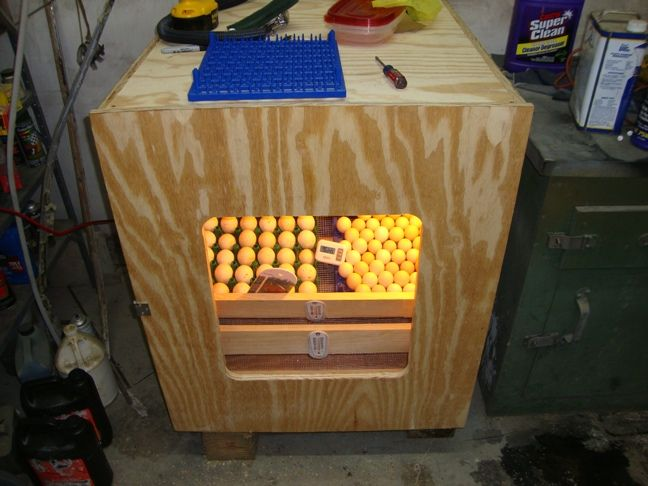 home made incubator | home made incubator, what do you think? - Homesteading Today