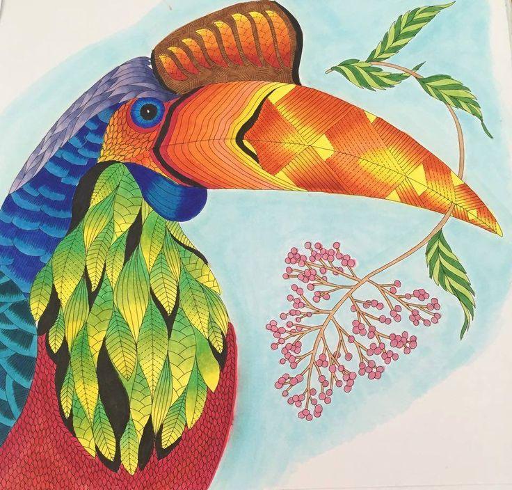 тропическая птица рисунок квитанциях свет поставила