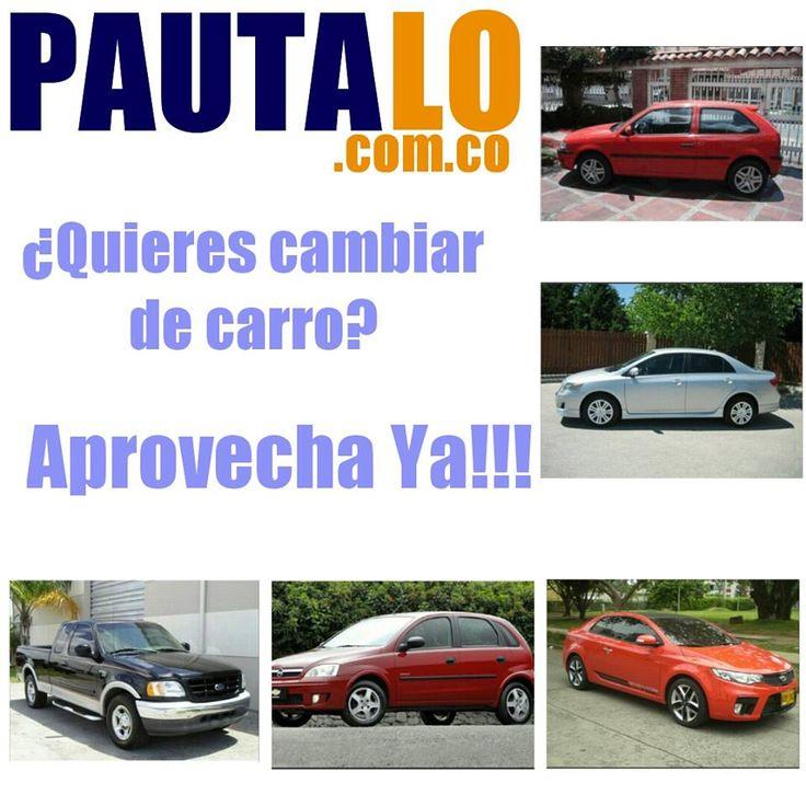 http://www.pautalo.com.co
