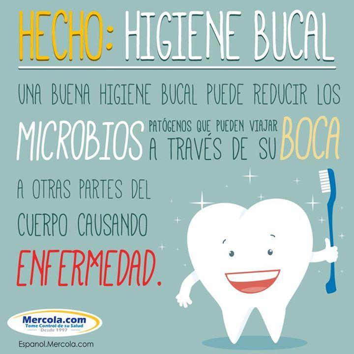 !La higiene oral es aún MÁS importante de lo que se pensaba!