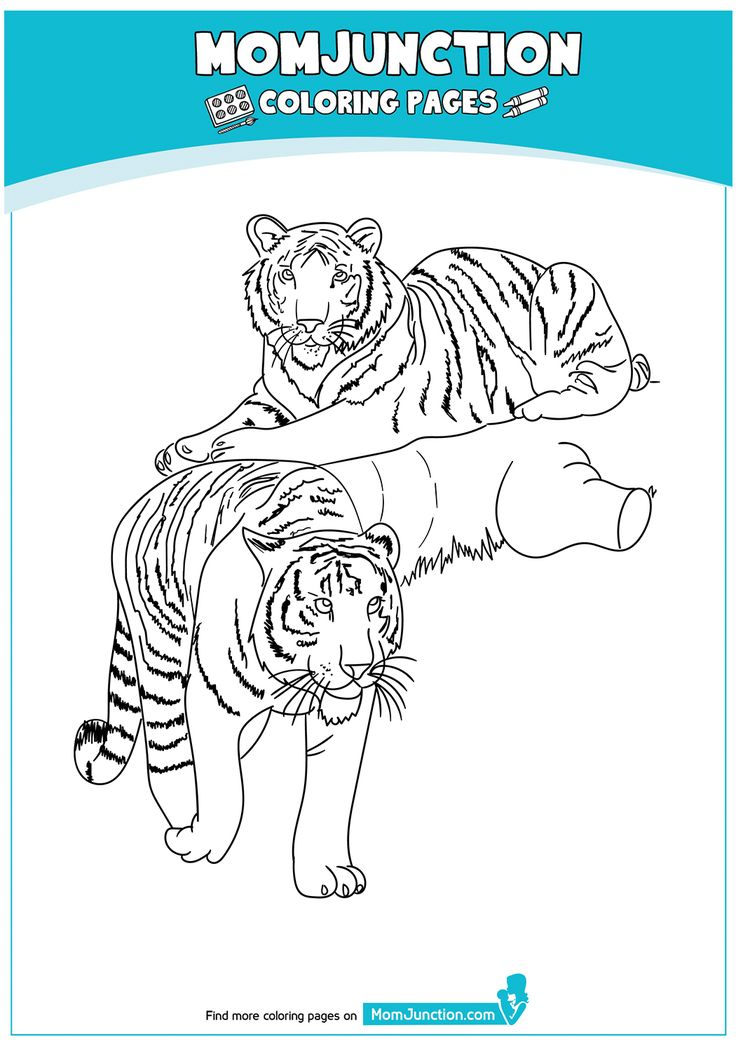 The-Lion-17 | Bear coloring pages, Giraffe coloring pages ...