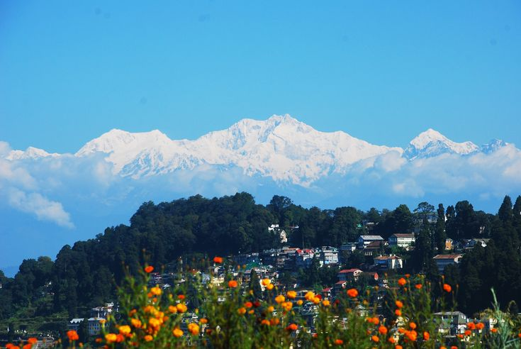 Sikkim is a tiny but wonderful state in India. Sikkim is covered with mountain, snow and excellent flora and fauna that you must love. There are many specialty of Sikkim and Darjeeling tour. A good Sikkim tour package will help you drive into the highest mountain passes of the earth which also acted one of the major parts on the ancient trade route.