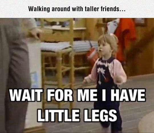 Wait For Me, Guys. This is me all the time!