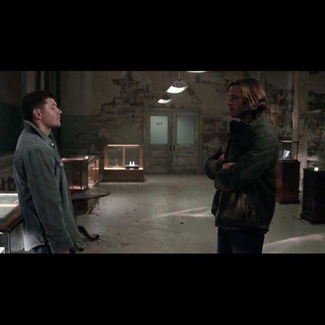 QOTD; have you done a live stream yet  Aotd: yes  Tags:#supernaturalfamily #supernaturalfandom #castiel #deanwinchester #samwinchester #supernaturalfacts #supernaturaltumblr #supernaturaledit #supernaturalfans #jaredpadalecki #jensenackles #akf #marksheppard #mishacollins #mishacollinsforpresident2k16 #bobbysinger #idjits #moose #666 #chevyimpala1967 #baby #carryonmywaywardson #like4like#follow4follow#supernatural#supernaturaltv#plzlike#supernaturalclub#spnposts#christosupernatural.club