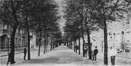 Avenue Concordia
