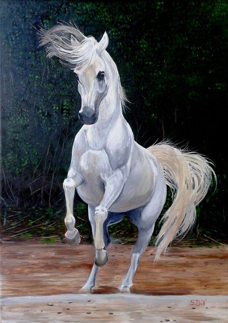Soledad Dellepiane Potro blanco óleo sobre tela de 50 x 70 cms ... ¡BIEN! (pintura original, inspirada en fotografía)