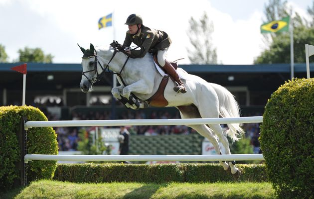 If you're looking for inspiration for things to do in 2015, check out Horse & Hound's guide to the best equestrian outings in the UK during 2015 at http://www.horseandhound.co.uk/news/plan-equestrian-outings-2015/#CoAmYD76tqDUhbYU.99