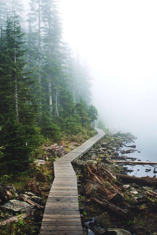 Foggy Lake Twenty Two - Washington | by: { Tanner Wendell Stewart }