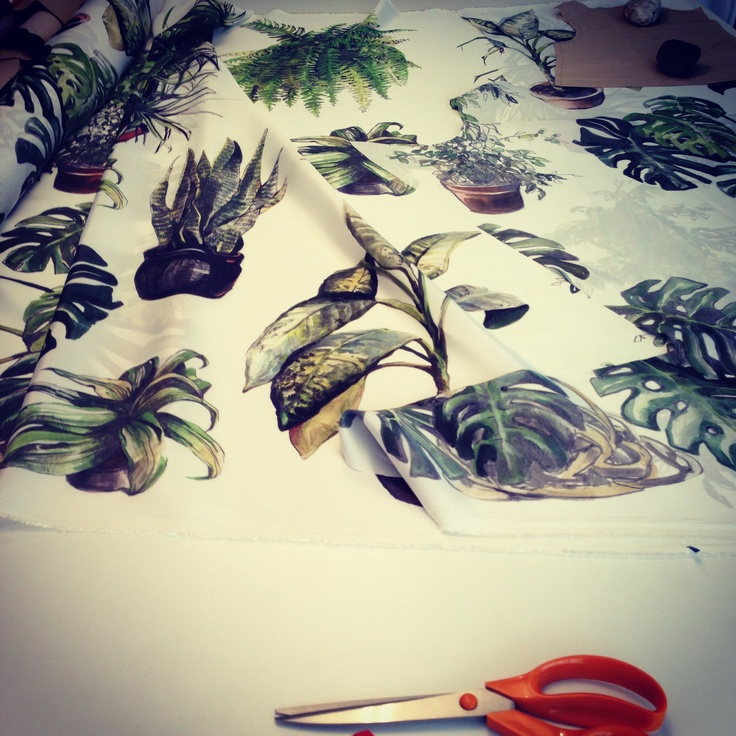 INDOOR PLANTS @ panel capsule collection