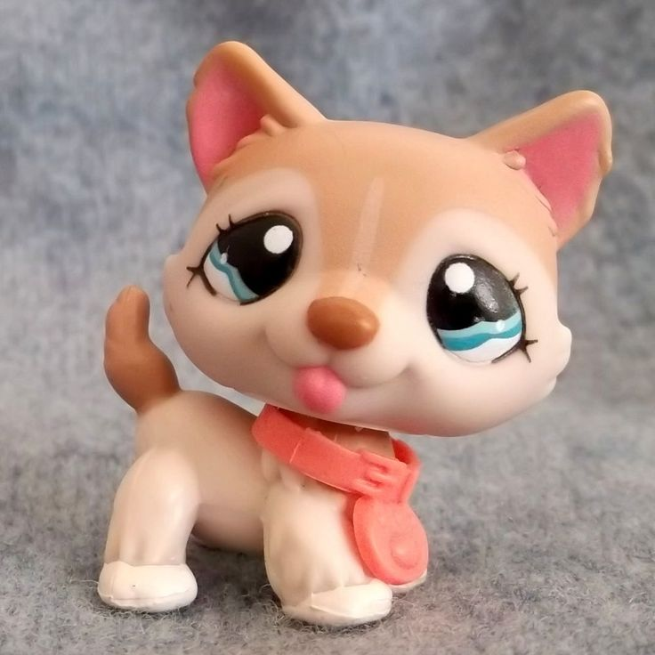 LITTLEST PET SHOP 1012 HUSKYwith Collar LPS #1012 VGC Rare Original in Toys & Games, Other Toys & Games | eBay