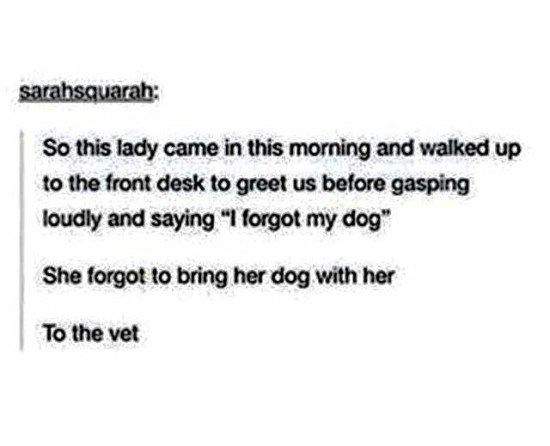 I forgot my dog clean funny