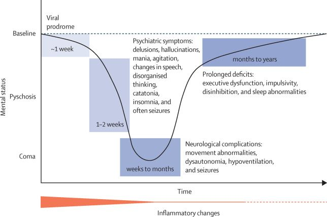 Review An Update On Anti Nmda Receptor Encephalitis For