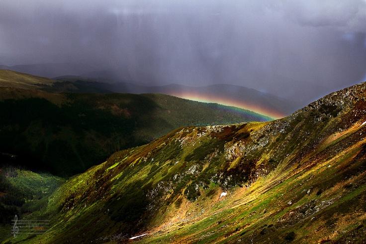 Colors after rain © Cristian Lipovan
