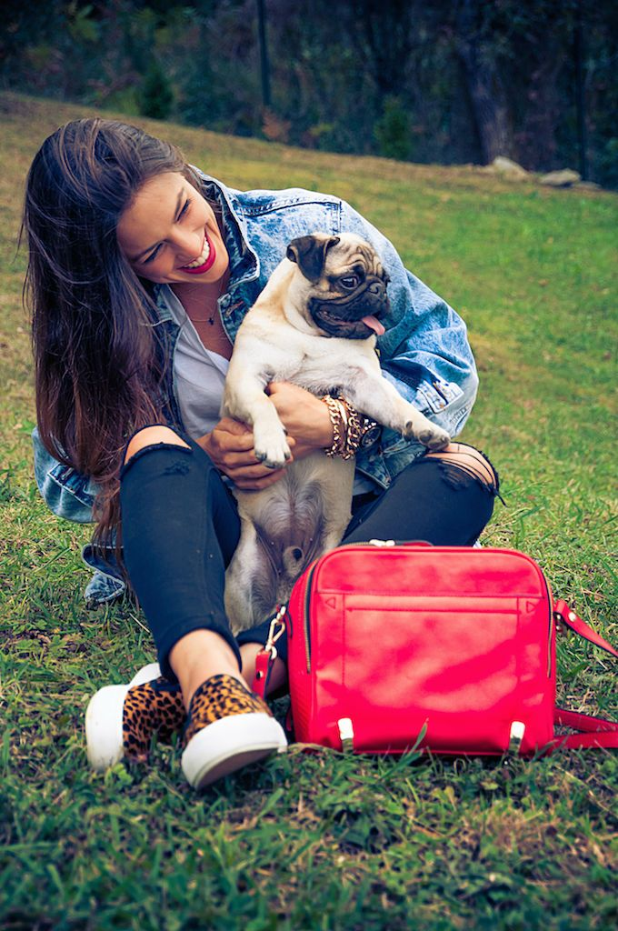 Carlino, Pug, Blogger, Spain, Bilbao, FW14, Ripped Jeans, Pull&Bear, Zara, Inditex, Oversize jacket, Red handbag