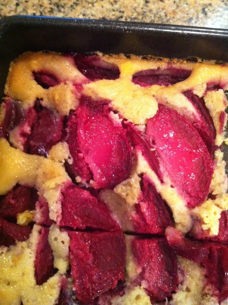 "Plum Cornmeal Cake- moist, not too sweet. Butter 8"" pan or cast iron ..."