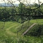 Located in Bartow County, the Etowah Indian Mounds site is home to the second largest Indian mound in North America, which is more than 300 ...