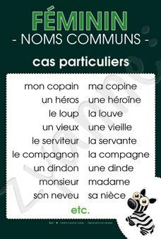 Féminin - Noms communs - Cas particuliers