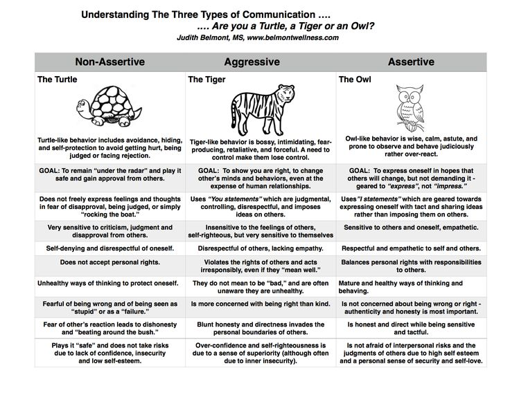 are you a turtle  a tiger or an owl