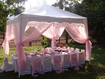 enchanted, whimsical tent, perfect for little girl b'day party