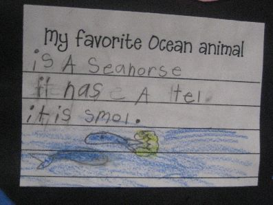 My Favorite Pet Graphic Organizer for Opinion Writing