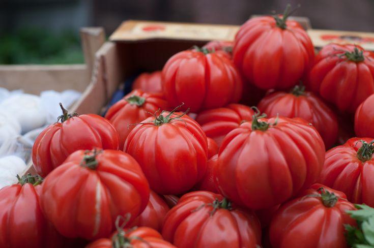 Recept na nálev, který vám níže popíšu, pochází od starší ženy z vnitrozemí Bulharska, které dělá tuto kůru u svých rajčat 2x až 3x za sezónu. Od doby co ji u svých rajčat provádí, netrpí rajčata na plísně, ani když v daném roce hodně prší. Svá rajčata sklízí až do konce října a to i v letech, kdy je studený podzim a hodně prší. Uvádí, že rajčata jsou chutnější, nenapadají je ani jiní škůdci a slunce je tak snadno nespálí.