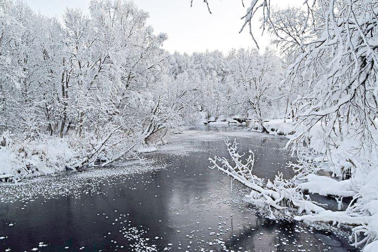 Full blown winter landscape by Futelva in Norway