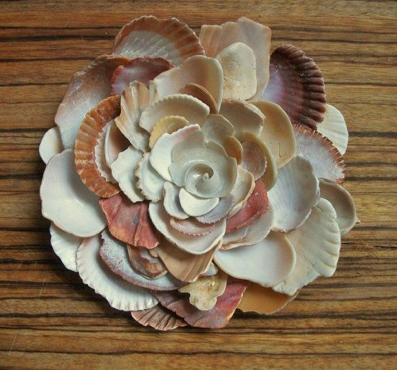 I have so many shells that are just taking up space, I might do this