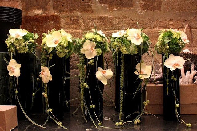 Catherine Muller design