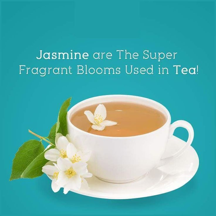 Did you know? �� #FlowerFact  Jasmine Love ❤  For more: http://www.flora69.in/  Call on - 09769560569  Free Home Delivery - Same Day Delivery - Mid Night Delivery  #FLORA69 #flowers #bouquets #teddy #Bears #cakes #Cupcake #chocolates #gifts #jasmine #facts http://misstagram.com/ipost/1552033402568107808/?code=BWJ7igXnOcg