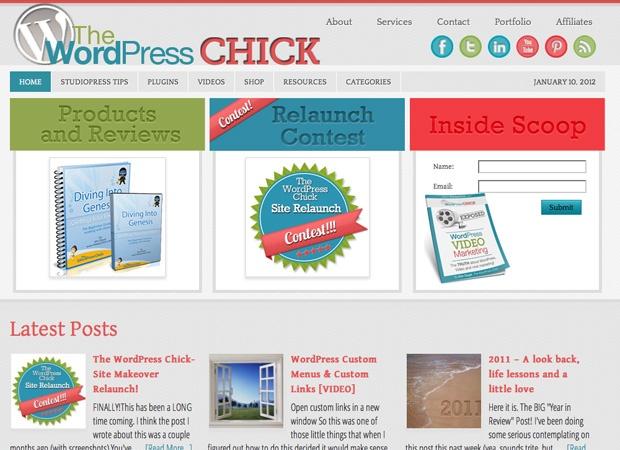 Used Genesis Scribble theme Internet Site,  Website, Web Site