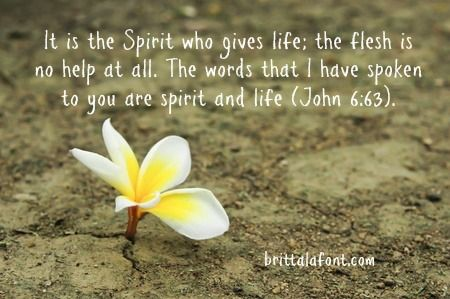 "Jesus said, ""It is the Spirit who gives life; the flesh is no help at all. The words that I have spoken to you are spirit and life"" (John 6:63). God's Spirit, at work through His Word can change my mind. And in hearing and doing His Word, my life is changed. Abiding in the Word is the healing and wholeness that we all need; it is freedom from The Curse. And this freedom is a joy-maker."