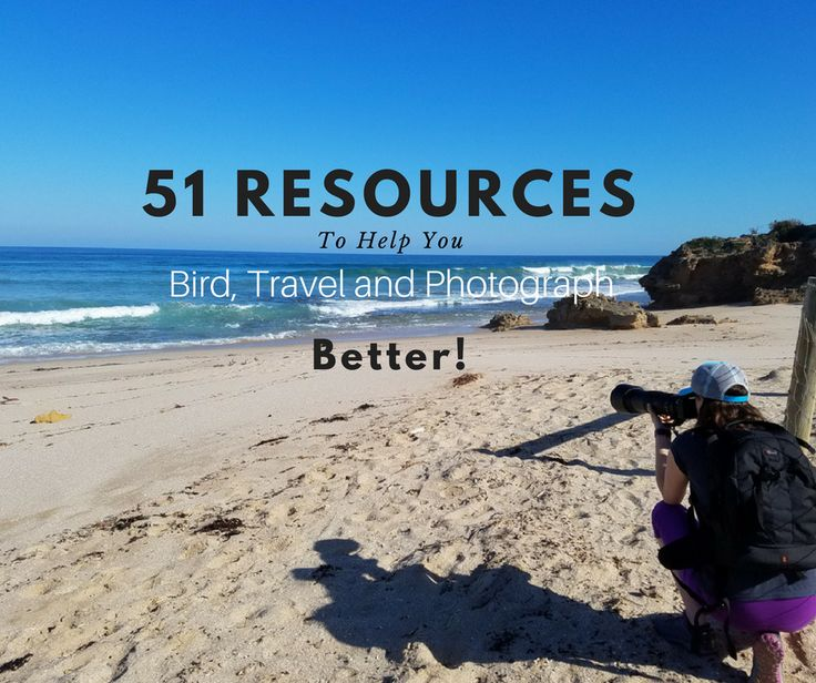 51 birding resources to help you bird, travel and photograph better! Everything from field guides, to bird blogs, to travel planning websites!