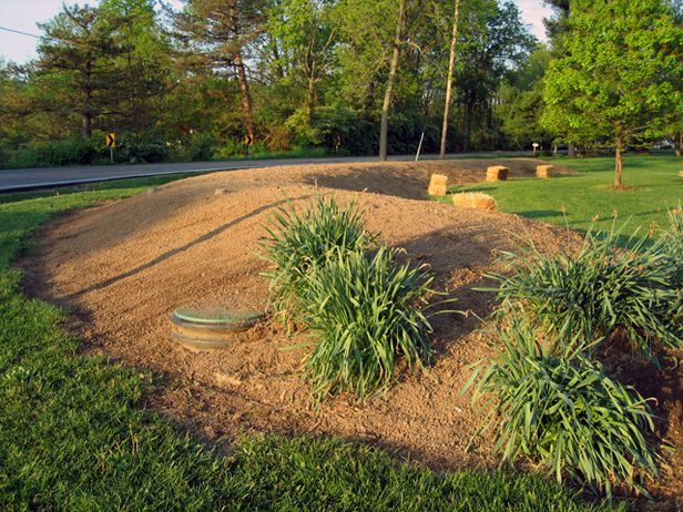 Nothing Stops A Mantis Septic Mound Landscaping Ideas