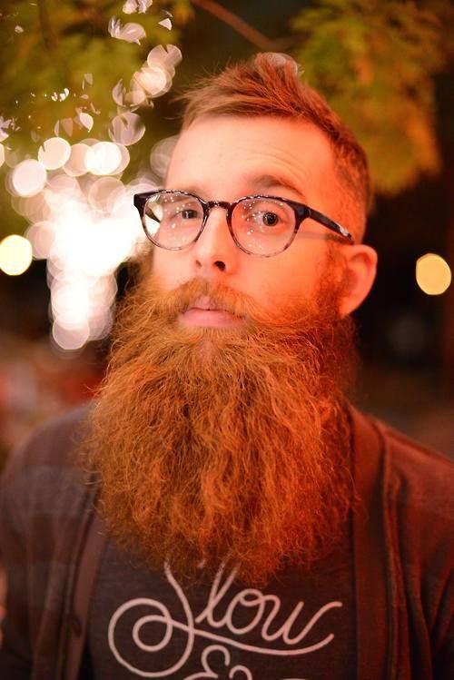 Red beard ginger beards bearded man men big and puffy for Red beard tattoo